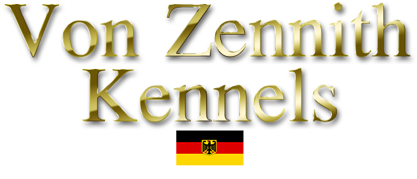 Von Zennith German Bloodline Rottweiler Breeder
